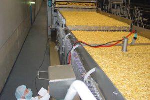 Massenfluss Feuchtemessung in der Lebensmittel Industrie | InduTech instruments GmbH